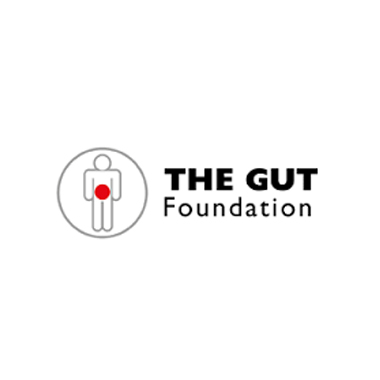 The Gut Foundation - Digital strategy for Inflammatory Bowel Disease (IBD) 2016 Awareness Day